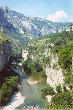 Gorges du Tarn, between Les Vignes and Ste.Enimie